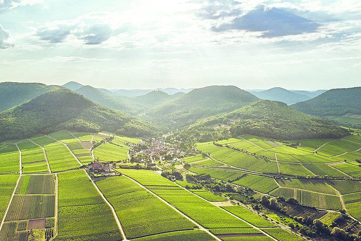 Leinsweiler Luftaufnahme