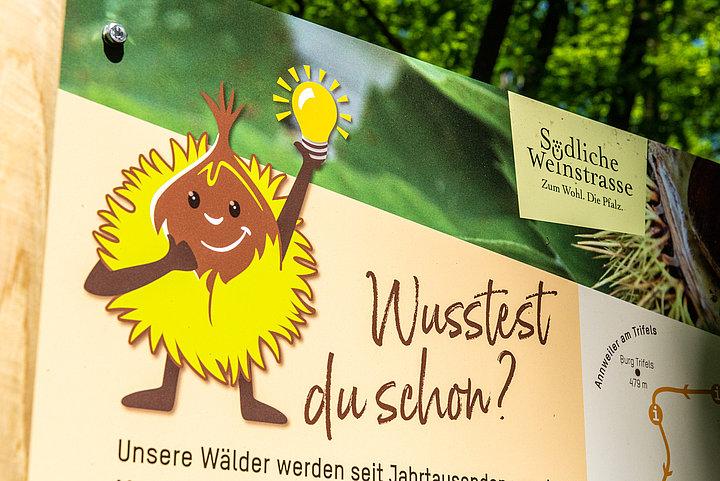 Entlang des Keschde-Erlebniswegs zwischen Annweiler und Leinsweiler informieren viele Infotafeln über die Esskastanie, die Frucht, den Baum und die Besonderheiten.