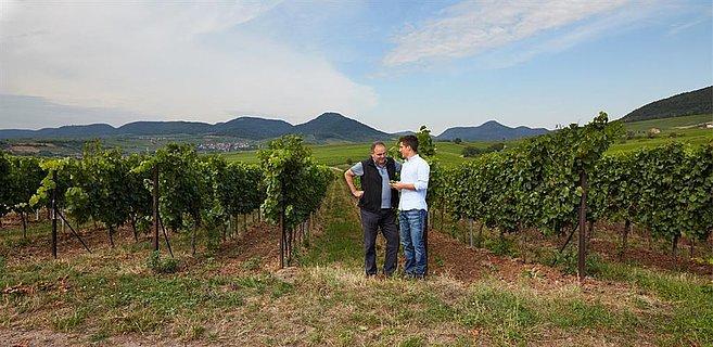 Weingut Keßler - Münzberg