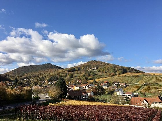 Leinsweiler im Herbst