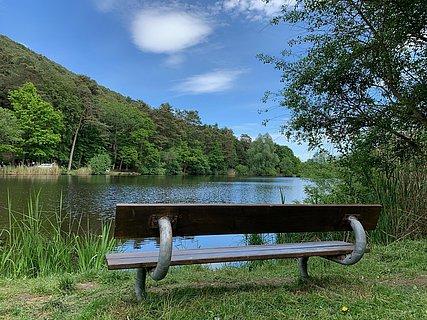 Sitzbank am Landschaftsweiher St. Martin