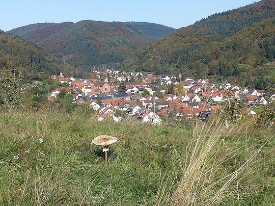 Landsch.