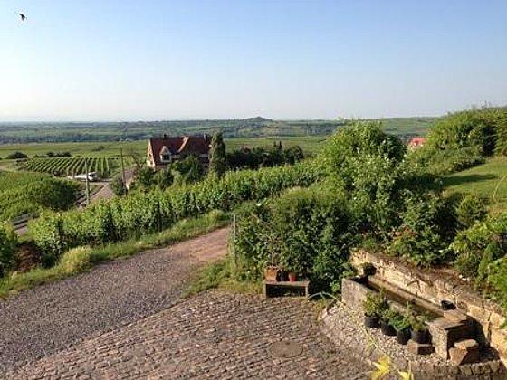 Ausblick in die Rheinebene
