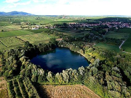 Luftaufnahme Biotopweiher Alte Tongrube