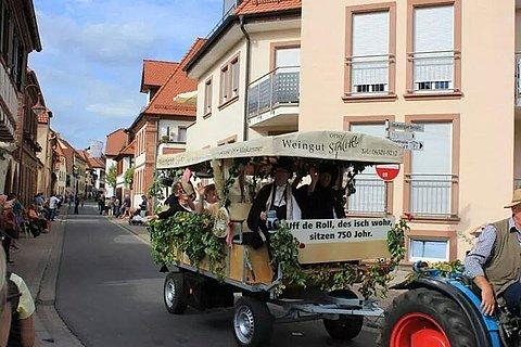 Planwagentour Weingut Stachel